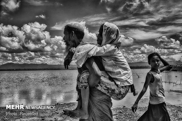 Dünya Üzerindeki Mülteci Sorunu galerisi resim 12