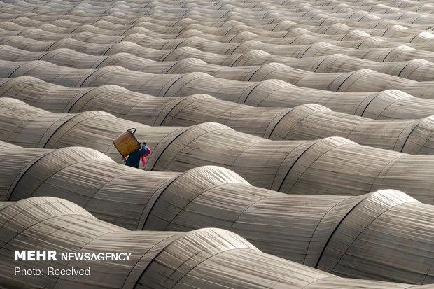 Dünya Üzerindeki Mülteci Sorunu galerisi resim 5