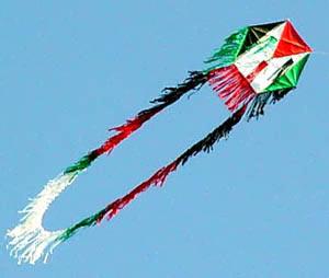 Gazze'de uçurtmalar özgürlüğe uçtu galerisi resim 1