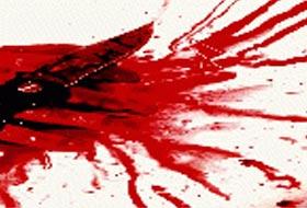Selçuk Üniversitesi'nde cinayet