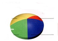 Son seçim Anketleri Sürpriz Sonuç