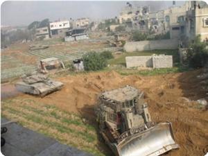 İşgal Rejimi El-Halil'de 2000 Dönüm Araziyi Gasp Etti