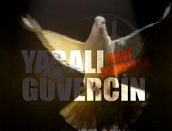 Yaralı Güvercin Mavi Marmara VİDEO