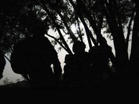 Yüksekova'da 1 PKK'lı Teslim Oldu