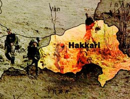 Hakkari bir PKK'lı teslim oldu