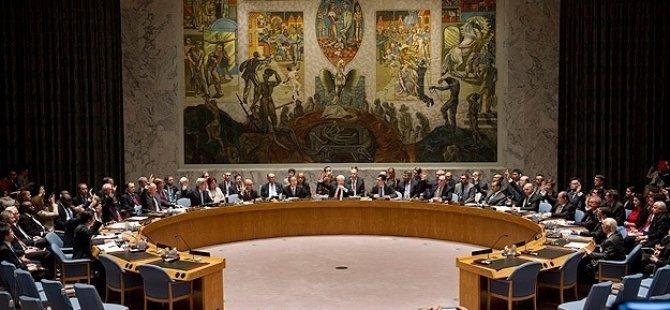 Mısır'dan BM İnsan Hakları Konseyi'ne tepki