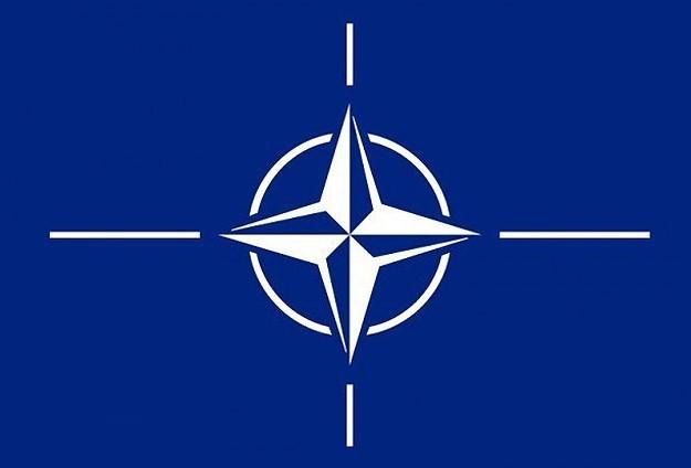 """""""NATO, IŞİD Karşıtı Koalisyona Katılacak"""