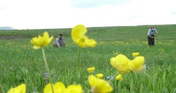 Baharın Müjdecisi Son Cemre Toprağa Düştü