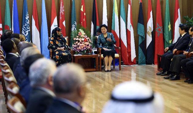 Çin, 2014'ü 'Arap Dostluk Yılı' ilan etti