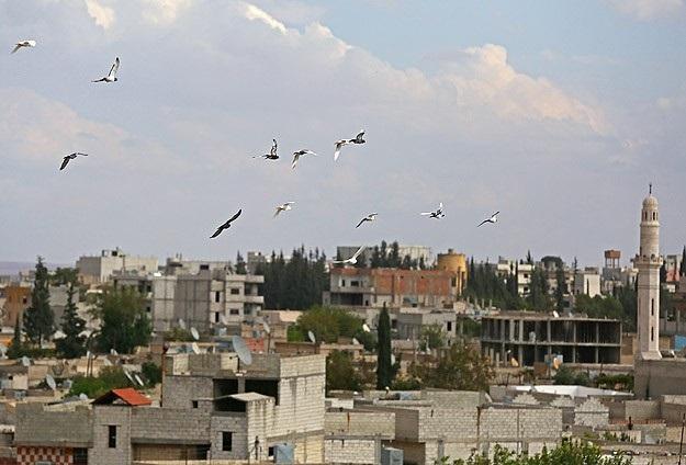 Kobani'de son durum, IŞİD takviye yaptı