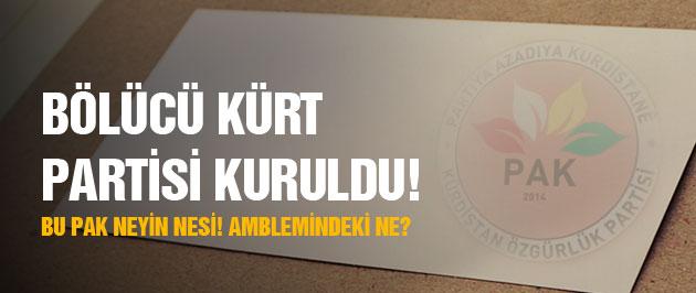 Bölücü Kürt partisi kuruldu! Bu PAK neyin nesi?