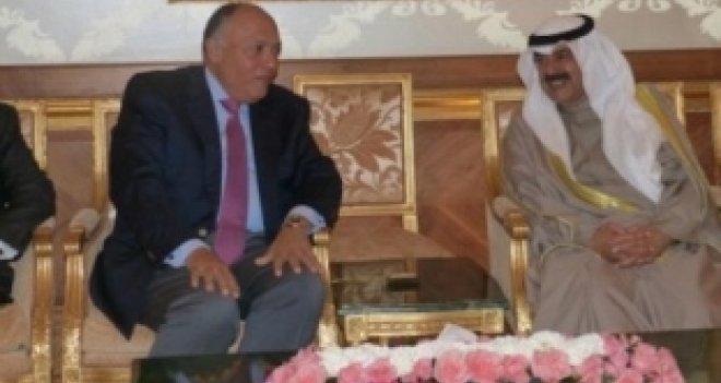 Mısır: Suriye'de tek yol siyasi çözüm