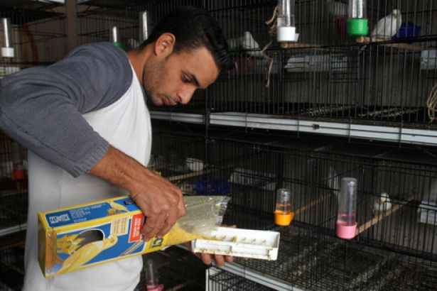 Filistinli Gençler Geçinmek İçin Bu İşi Yapıyor