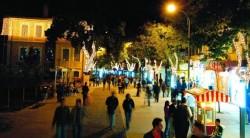 Konya'da Ayı Alarmı!