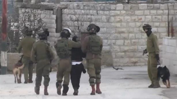 İsrail Köpekli İşkenceye Soruşturma Başlattı(!)