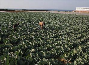 İsrail Gazze'ye Muhtaç kaldı