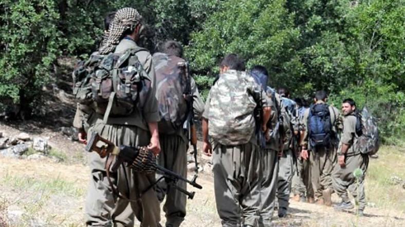 PKK Diyarbakır'da 2 Kişiyi Kaçırdı!