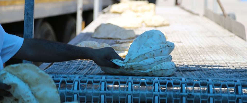 Suriye'de Ekmeğin Fiyatı 15 Lira