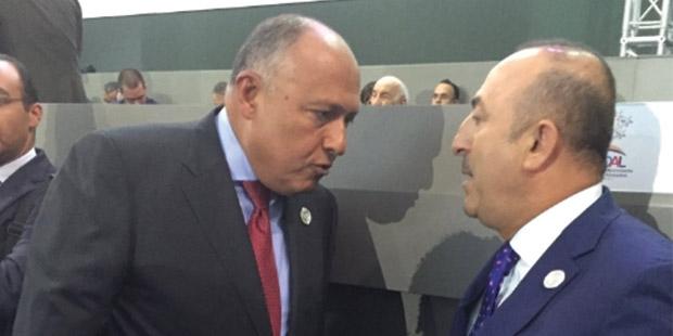 Türkiye  ve Mısır Dost Olma Yolunda ilerliyor