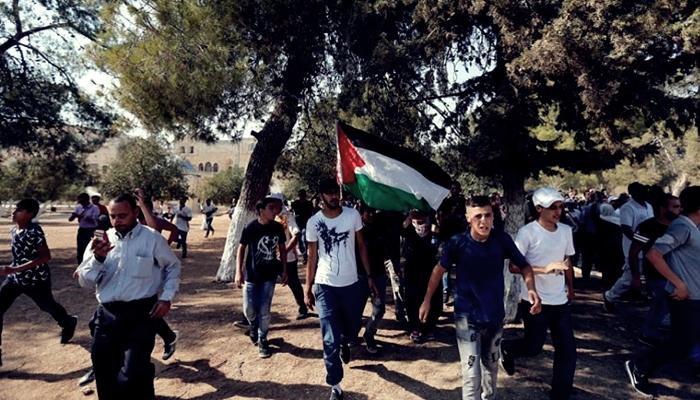 Filistinlilerden Suud, Ürdün ve Mısır'a Tepki