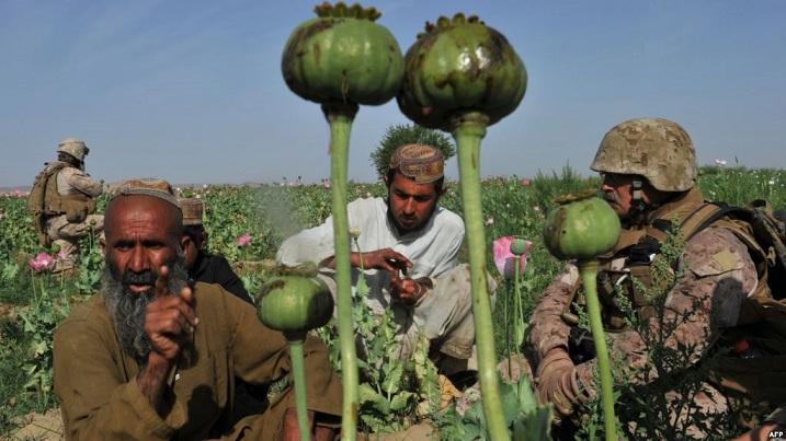 Afganistan ve CIA'in Gizli Eroin Hattı