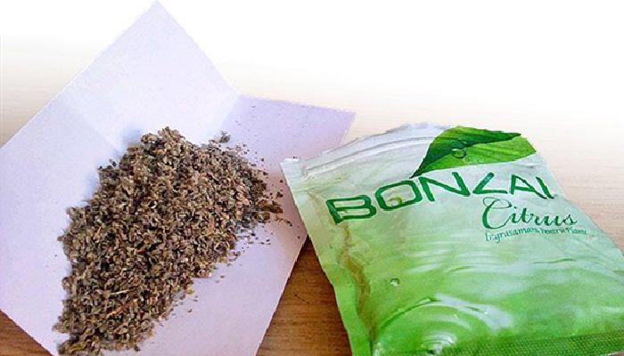 Türkiye'de Bonzai Kullanımı