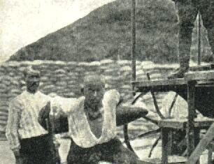 Çanakkale'de 500 Filistinli Şehid