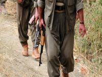 PKK'ya Topçu Desteği
