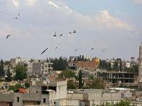 ABD Yetkilisi Kobanide