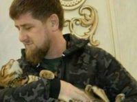 Rus Beslemesi Kadirov Şov  Peşinde !