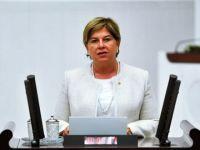 CHP'li Elif Doğan Türkmen İstifa Etti