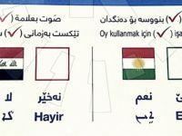 Barzani 3 Dilde Oy Pusulası Hazırladı