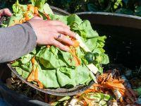 Suud 1 Trilyon Dolar Değerinde Gıda İsrafı Yapıyor