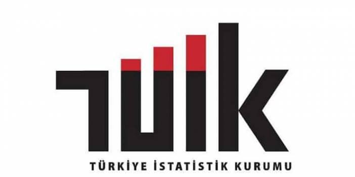 Türkiye'de İşsizlik Verileri