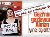 Almanlar Gezi Hayali Kurmaya Başladı
