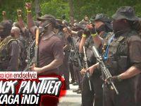 ABD'de  Black Panther Sokağa İndi